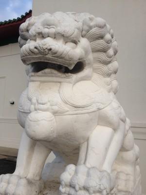 Wan Fu Dragon