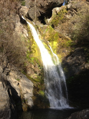 Salmon Cove waterfall