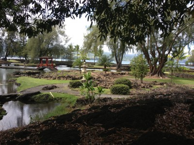 Pond, trees, and bridges in Liliuokalani Gardens.