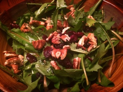 A Dandelion Salad - with roasted pecans, dried cranberries, and lemon dressing.